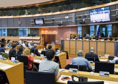 ELEN European Parliament Hearing